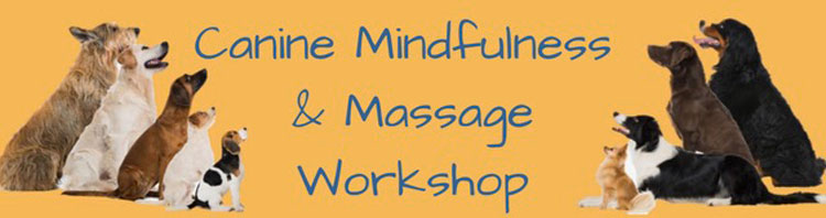 K9 Massage & Mindfulness Workshop
